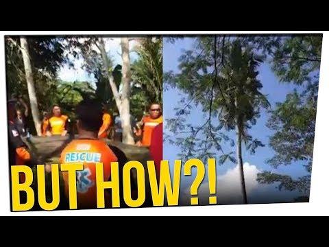 Man Hides in Coconut Tree for 3 Years ft. Michael Rosenbaum \u0026 DavidSoComedy