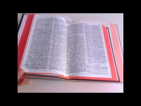 Tongan Bible New Version / Ko E Tohitapu Katoa / Reprinted from 1966 Text Edition