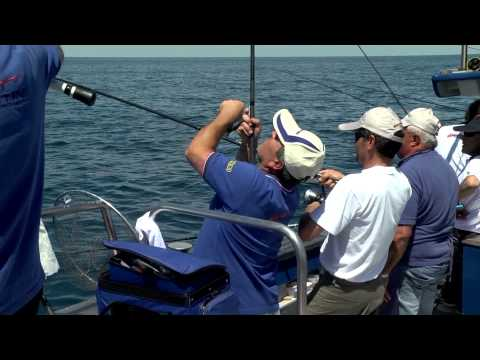 Italian Fishing TV - Tubertini - Bolentino su Charter