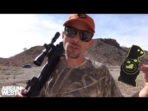 Gamo Swarm Magnum Shooting Over Fps And Hitting At Yards