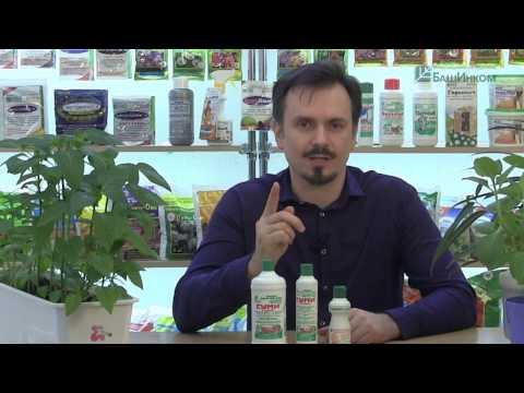 Вопрос: Можно ли подкармливать кактусы средством Гуми?