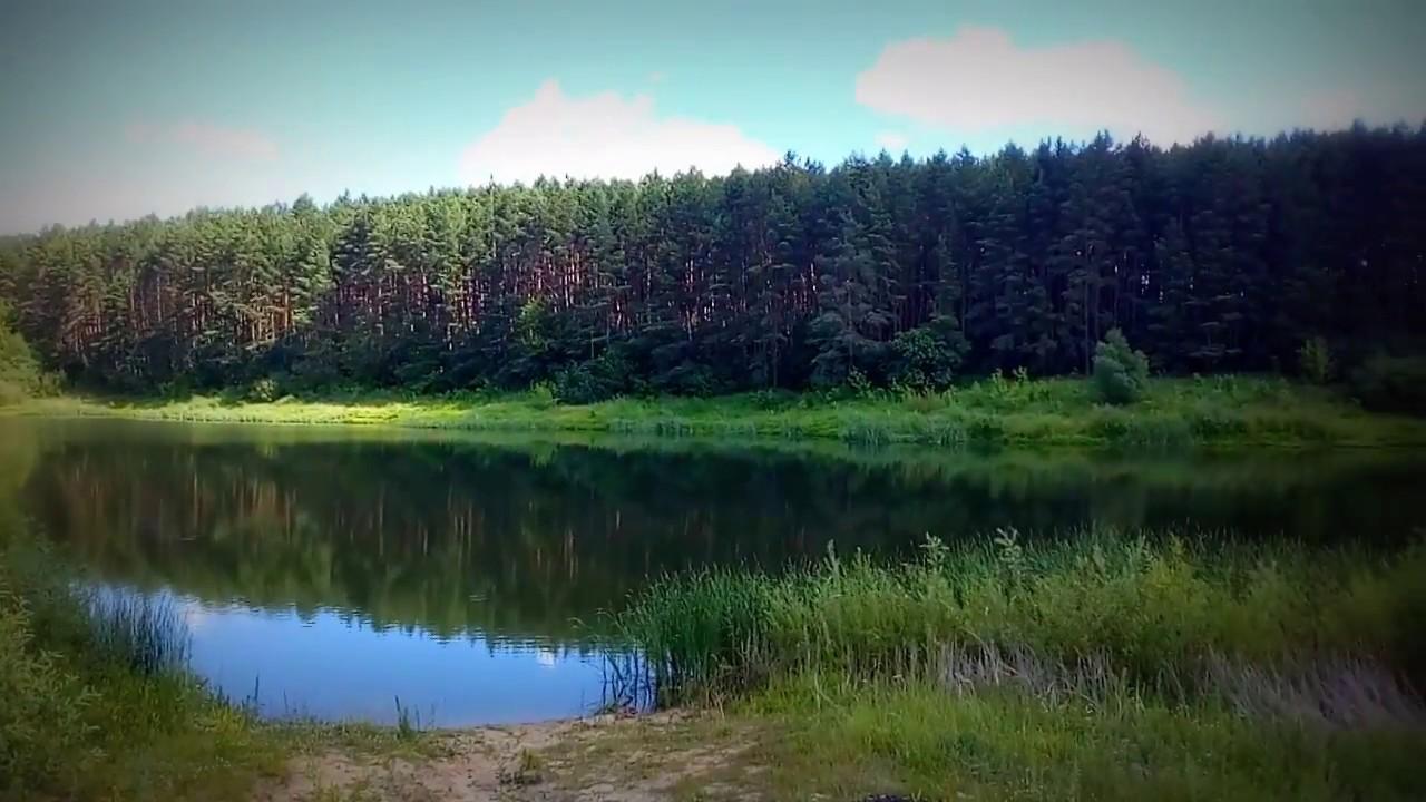 Страна чудес в Тербунском районе Липецкой области - YouTube