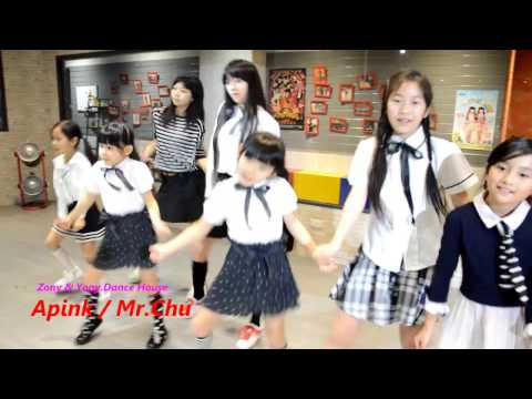 zonyyony.dh-Apink / Mr Chu (cover)