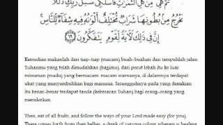 Gambar cover Ayat ayat syifa     YouTube
