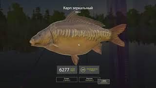 Гайд по ловле спиннингом в Русской рыбалке 4!