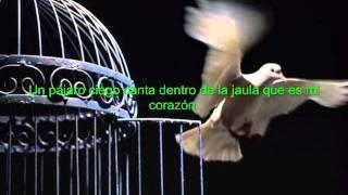 Dela - Johnny Clegg  (sub español)