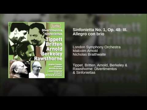 Sinfonietta No. 1, Op. 48: III. Allegro con brio