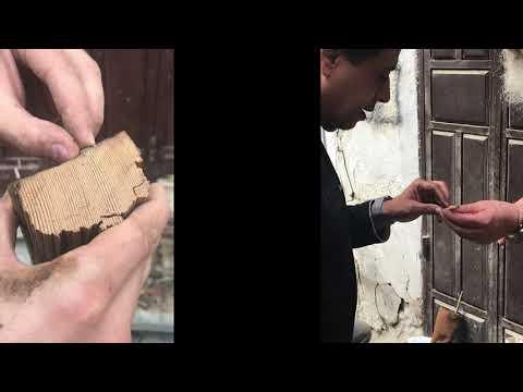 Wood Origin of Structural Elements of Historic Jeddah جدة التاريخية