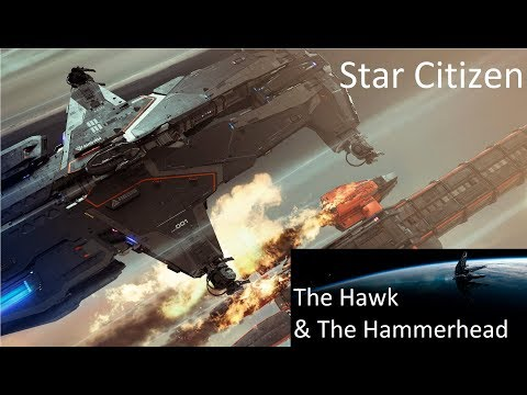 Star Citizen: The Hammerhead and the Hawk