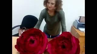 Большие цветы своими руками индивидуальное обучение в мастерской у Светланы Копцевой