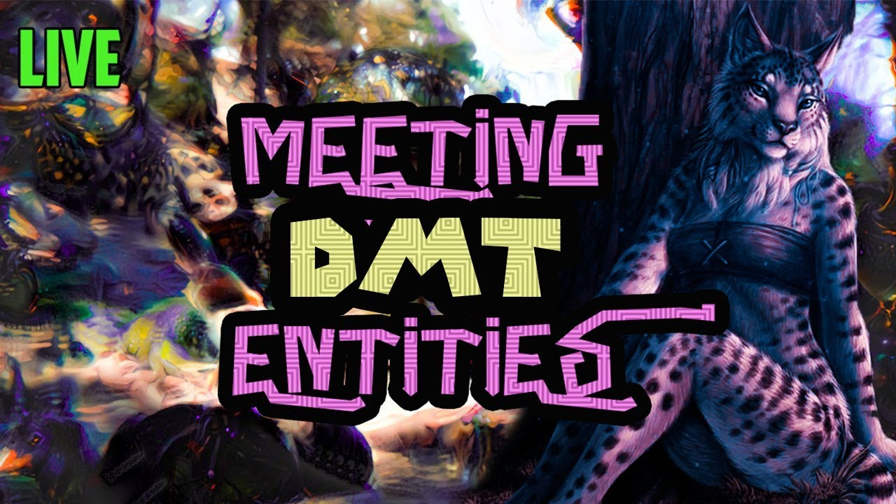 DMT Breakthrough Live Experience | Meeting Entities Trip (What it