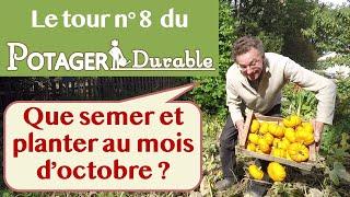 Que semer et planter au mois d'octobre au potager ?