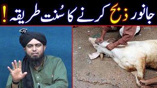 Qurbani Ka Tareeqa | Zibah Ka Tareeqa | Qurbani Ka Practical | Takbeer | Engineer Muhammad Ali Mirza