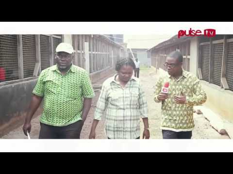 Pulse TV-ADB Supports Ann Arthur to success (Poultry Farm)