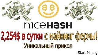 2,254$ в сутки с майнинг фермы на NiceHash!