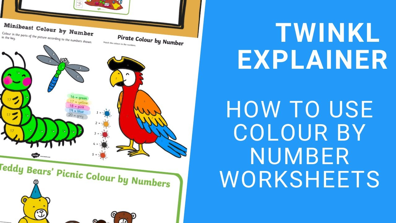 Colour By Number Sheets   Kids Worksheets