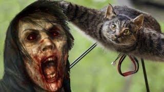 Летающий Кот против зомби