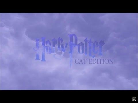 Harry Potter - Cat Edition