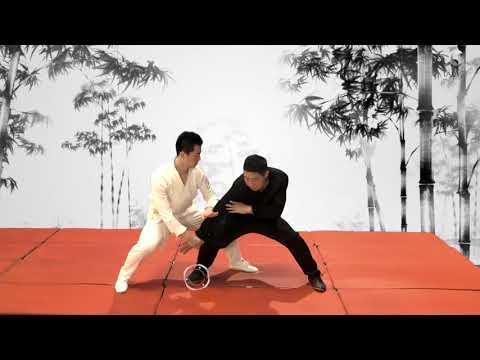 Jet Li's Taiji Zen Online Academy - Level 2: Kao 靠: Application