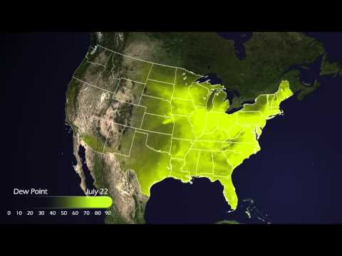 High Dew Point Makes Heat Wave Miserable (2011.07) [1080p]