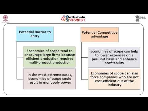 Economies of scope, learning curve (ECO)