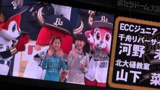 5/3 京セラドーム 試合前に3階席から撮りました.