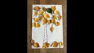 Осенняя аппликация из листьев березы