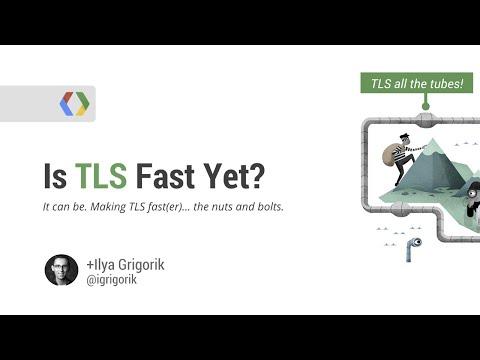 Is TLS Fast Yet?