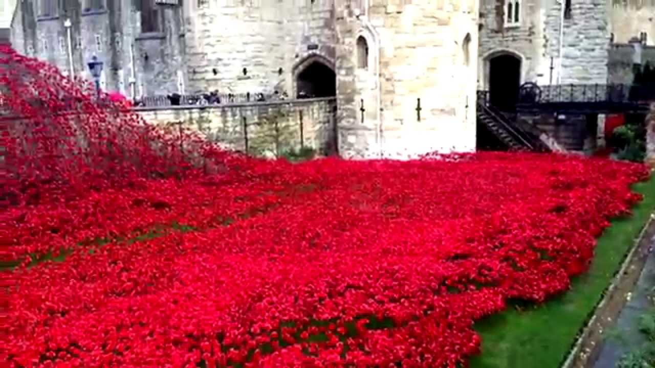 london poppy day remembrance day 2014 youtube