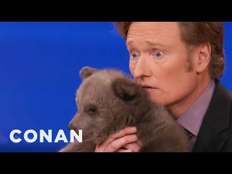 Animal Expert David Mizejewski: Brown Bear Cub & Baby Alligator – CONAN on TBS