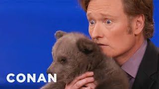 Repeat youtube video Animal Expert David Mizejewski: Brown Bear Cub & Baby Alligator - CONAN on TBS