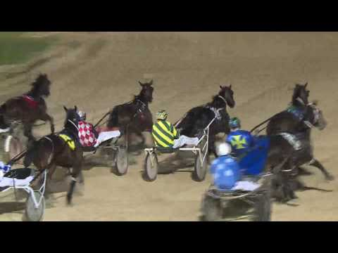 NEWCASTLE - 06/08/2016 - Race 4 - NBN TELEVISION PACE