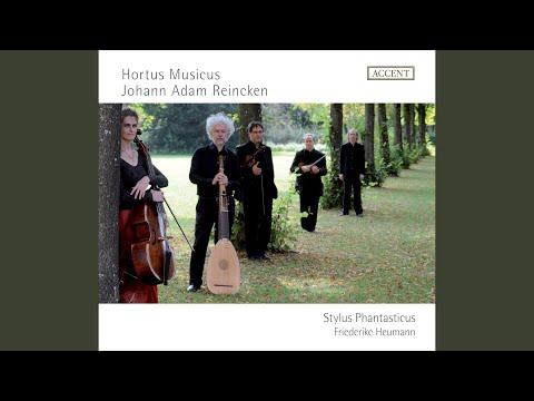 Hortus Musicus Recentibus Aliquot Flosculis: Partita No. 4 In D Minor: I. Sonata