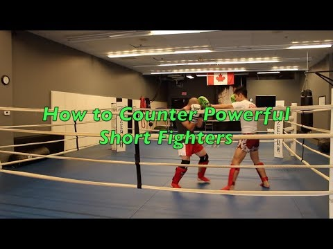 How to Counter Powerful Short Fighters ft. MMA Shredded