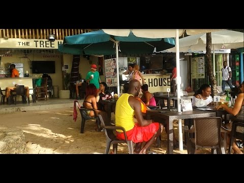 The Tree House Bar & Grill on Sosua Beach (updated)