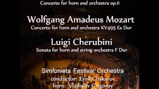 Wolfgang Amadeus Mozart: Horn Concerto No.4 in E-Flat Major, K.495: 1. Allegro moderato