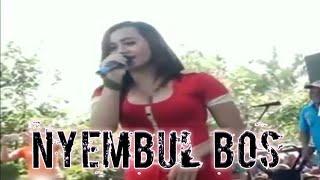 Download Video Uut Selly, Ditinggal Rabi, Goyangannya Hampir Tumpah MP3 3GP MP4