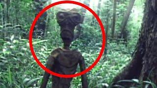 10 Misteriose Creature Che Forse Esistono Veramente