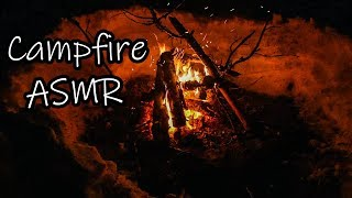 A Crackling Campfire During A Windy Winter Night - ASMR - 36 Minutes