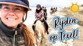 Met vreemde paarden over Texel racen! | felinehoi VLOG #115