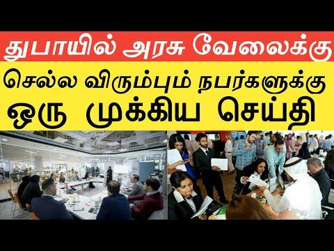 அமீரகத்திற்கு அரசு வேலைக்கு செல்ல விரும்பும் நபர்களுக்கு ஒரு முக்கிய செய்திகள்|UAE|Dubai News