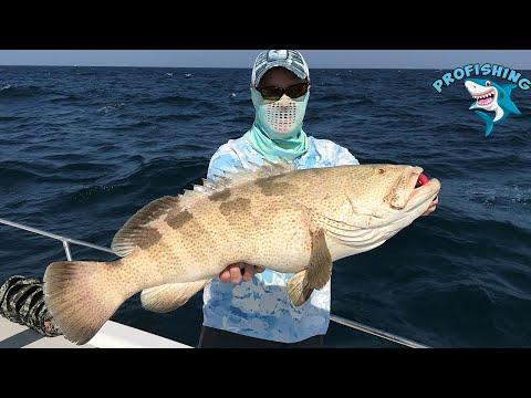 Abu Dhabi Fishing in the boat ! Huge Grupper!