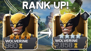 Wolverine Rank Up, Awakening and Gameplay - Marvel Contest of Champions