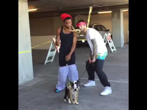 VINE:Do your chain hang low?/King Bach & Anwar Jibawi &Curtis Lepore