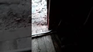 """Не"""" уютный дом"""" в бирюсинске"""