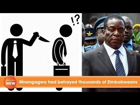 Zimbabwe latest news: Mnangagwa had betrayed thousands of Zimbabweans