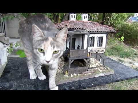 Diorama model of realistic bulgarian house