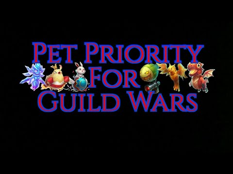 Pet Priority For Guild Wars | Castle Clash
