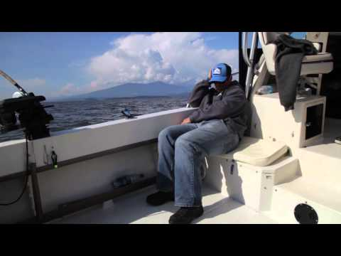 Bon Chovy Fishing Charters: Fishing In Vancouver: Spring 2015