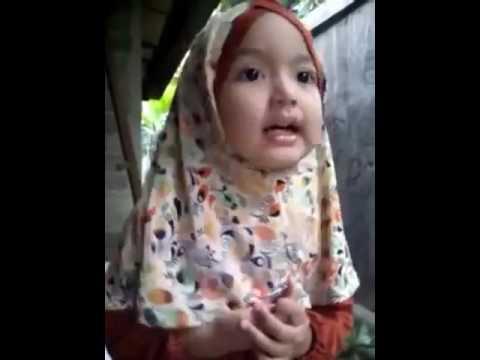 Anak Kecil Yg Hafal Surat Surat Pendek Dan Tau Dasar Dasar Agama